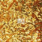 Scale Sequins Mesh Fabric Gold