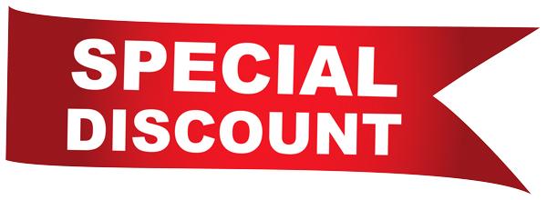Big Z Fabric June Sequins Discount