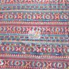 Tribal Pocahontas Sequins Multi Color Fabric Apache