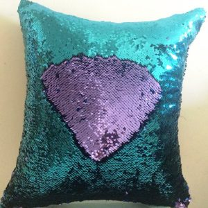 Reversible Pillow