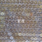 Delight Sequins Mesh Fabric Champagne